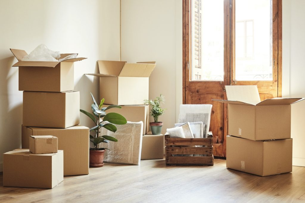Moving boxes and potted plants in an empty room illustrating 9 quick and easy ways to settle into your new home